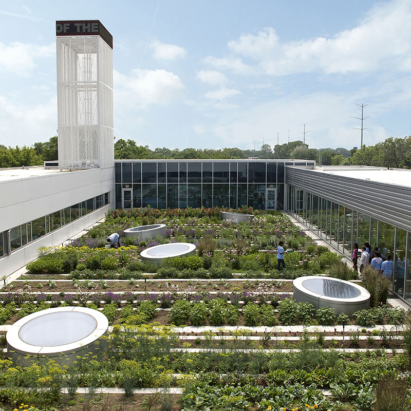 Gary Comer Youth Center Roof Garden case study page