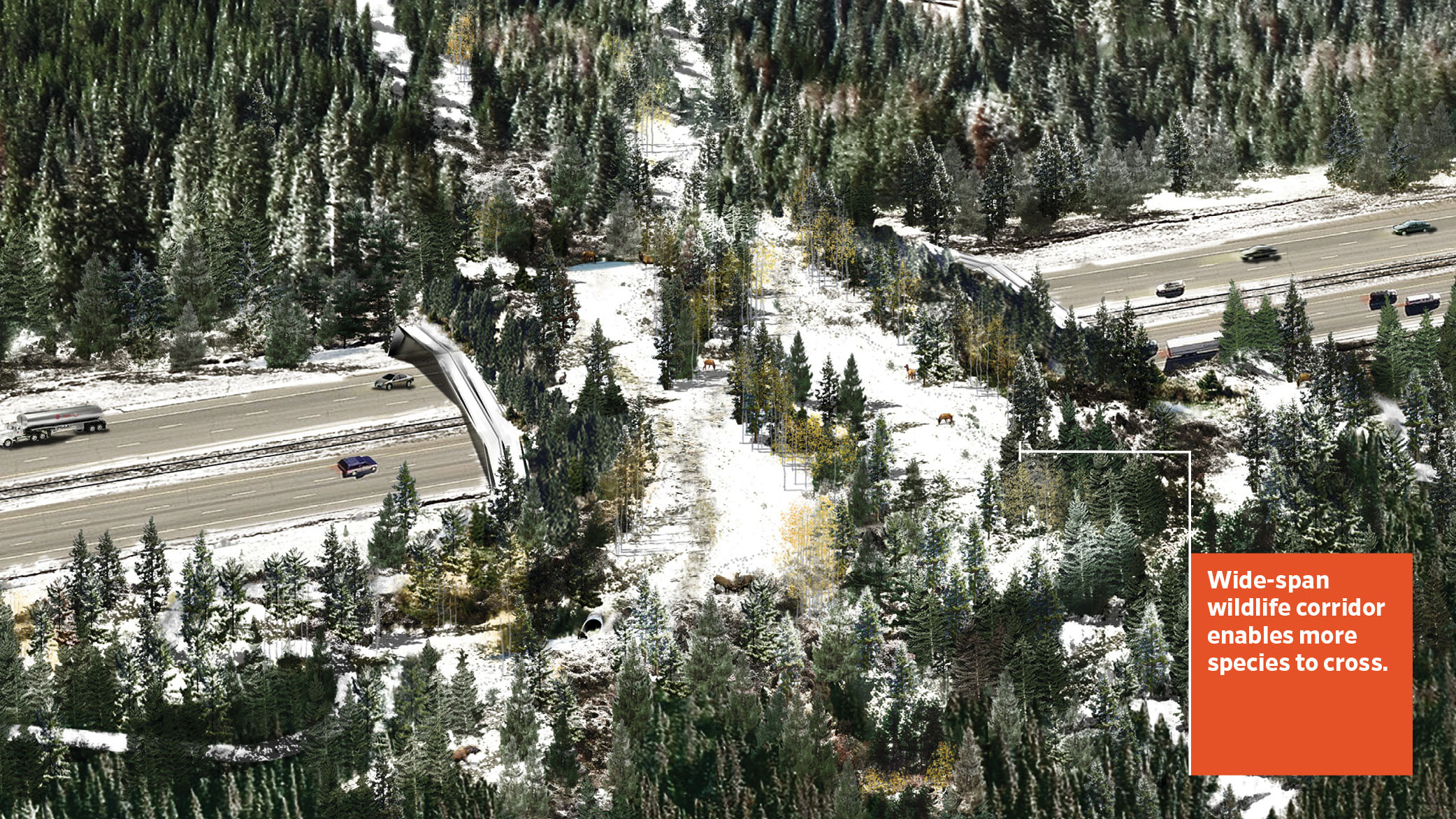 A rendering of the wide-span Hypar-Nature wildlife crossing in West Vail Pass, Colorado. The crossing covers a multi-lane highway and enables multiple species to cross in safety.