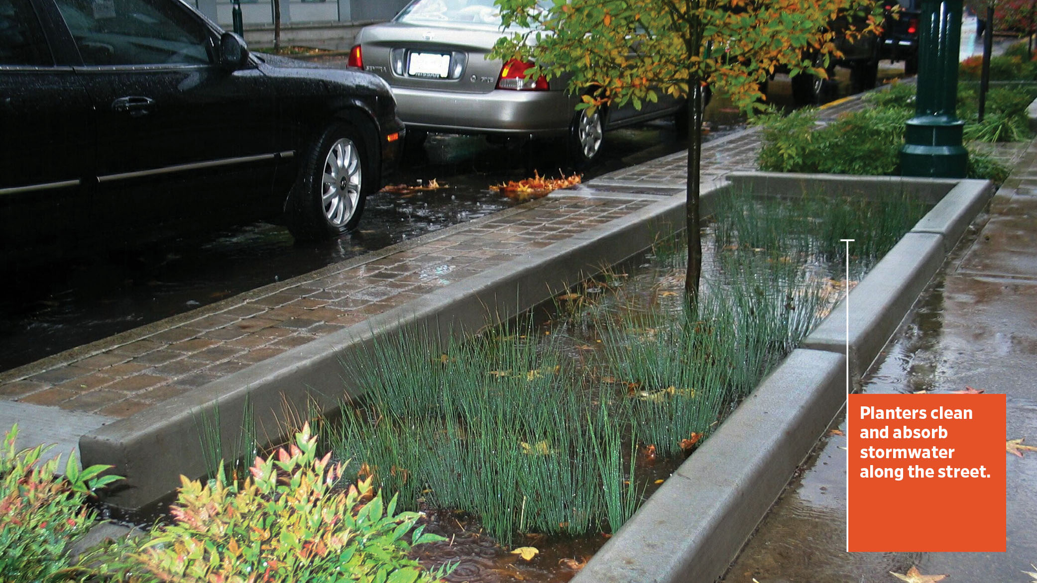 Each stormwater planter captures runoff to a depth of six inches until it flows back out into the street and is collected in the next downhill planter.